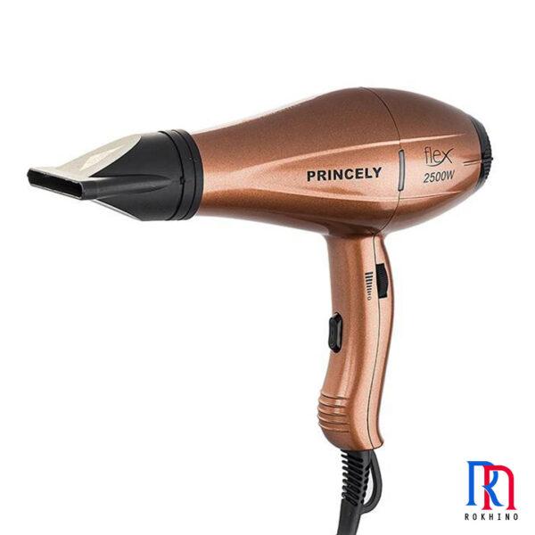 Princely PR256AT Hair Dryer